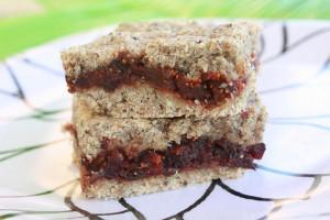 Gluten-free-Vegan-Fig-Newton-Clones