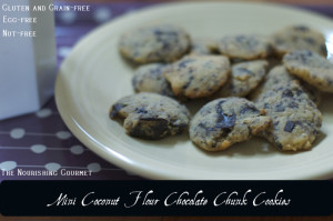 Mini Cocount Flour Chocolate Chunk Cookies
