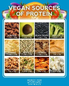 Are you getting enough protein.